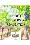 COTES DE BOURG/ DE CASTILLON